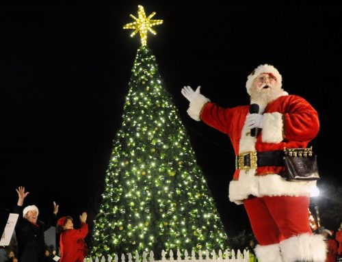 Kick off the holiday season with a Lake Highlands virtual tree lighting
