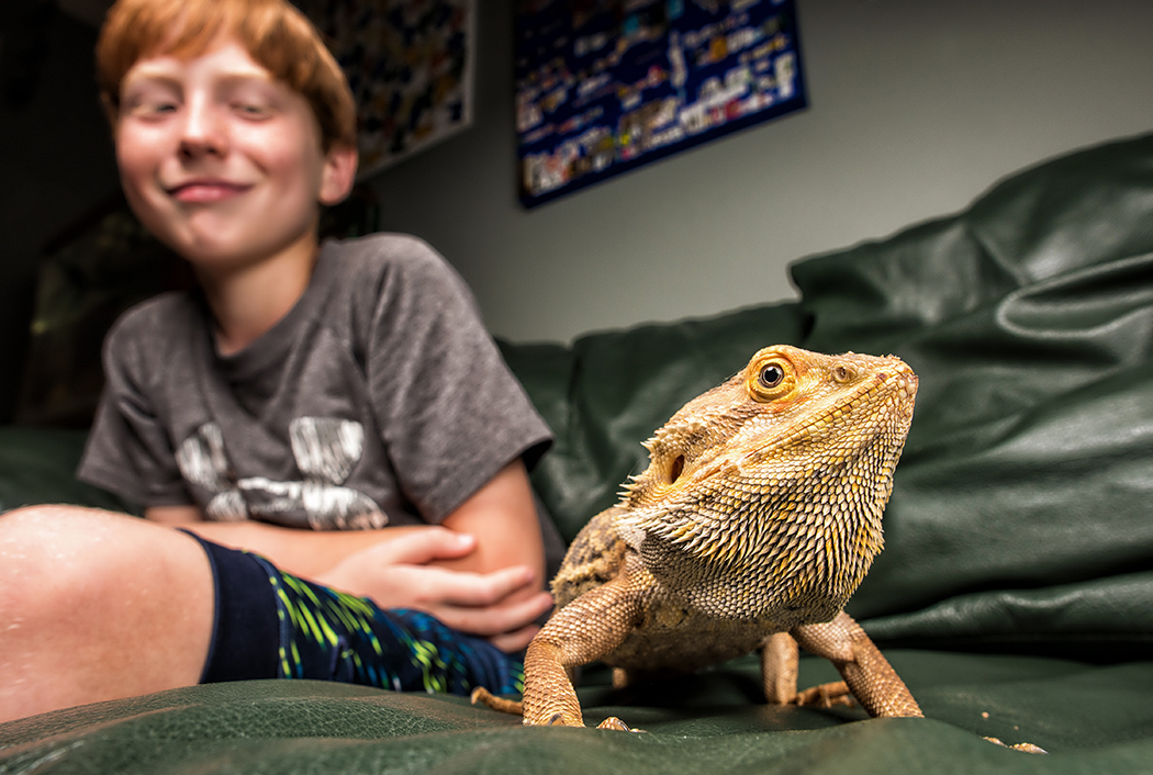 Braxton Ephraim with Noodles the bearded dragon. (Photo by Danny Fulgencio)