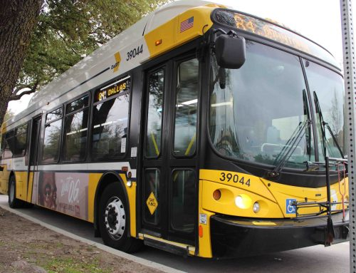Give your thoughts on DART's new bus network