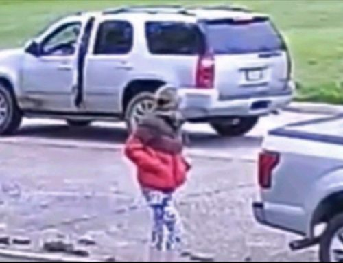 Attempted abduction near Moss Park
