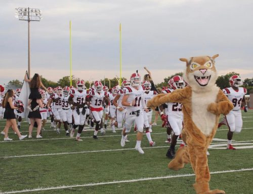 This Wildcat fought for her right to be the school's mascot, now she's on her fifth year