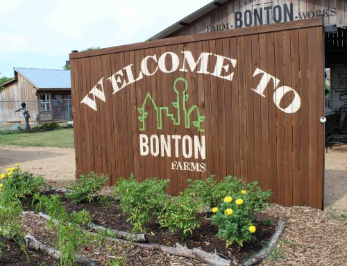 Bonton Village at Lake Highlands closer to bearing fruit