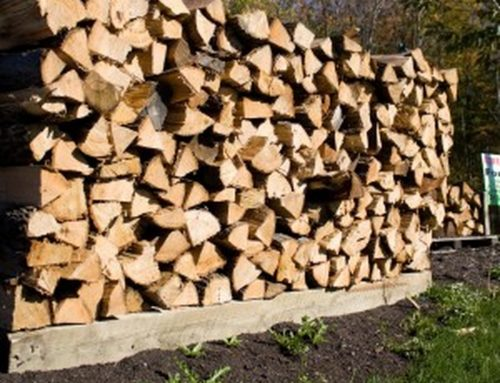 Neighborhood resources: Where to find food, warming centers and firewood