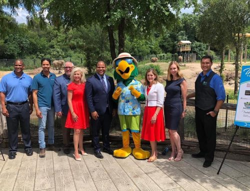 Kids can get free access to Dallas Arboretum, other attractions in July
