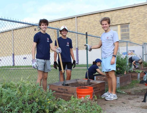 Young Men's Service League creates garden for young students
